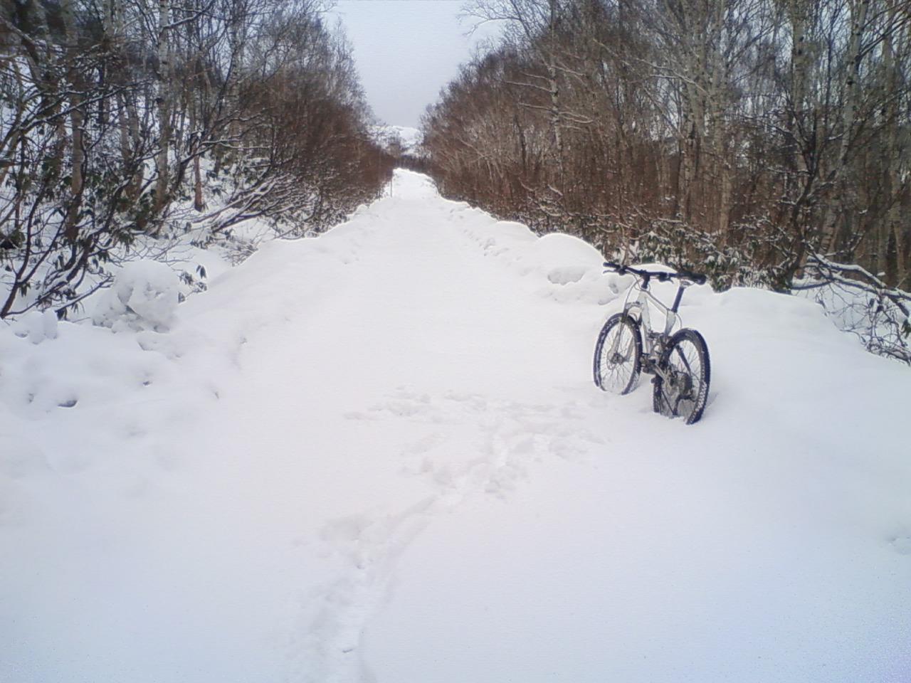パノ3コース雪上MTB