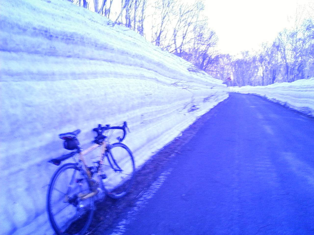 残雪ワイスゲート