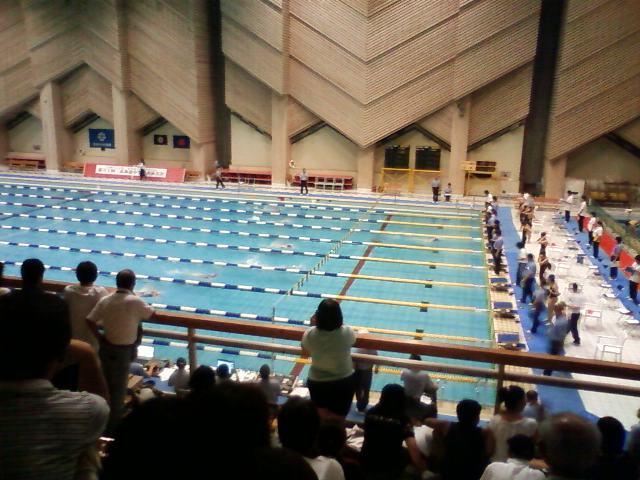水泳全道大会