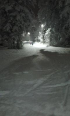 スキーO合宿